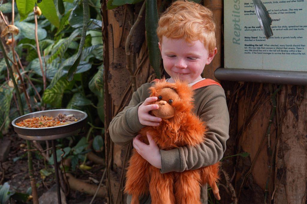 famous-rebel-paignton-zoo-video-tv