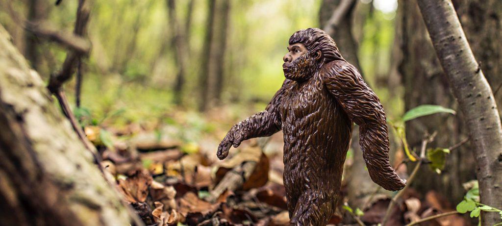 neandertholidays-torquay